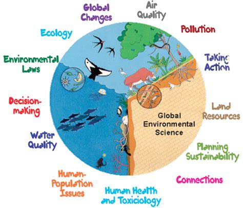 Sample Environmental Research Paper - wikiHow